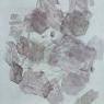 Four Palattes (trace)
